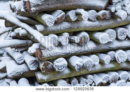 A pile of logs of wood under the snow