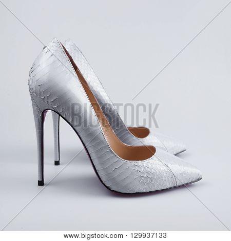 Elegant Shoes On The White
