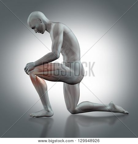 3D render of a male medical figure holding knee with partial muscle map