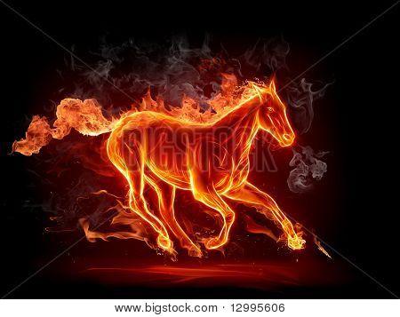Fiery stallion