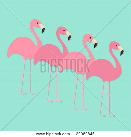 Four pink flamingo set. Exotic tropical bird. Zoo animal collection. Cute cartoon character. Decoration element. Flat design. Blue background. Isolated. Vector illustration