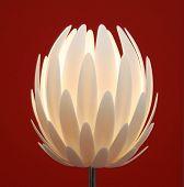 flower lamp poster
