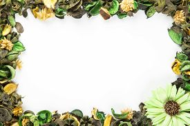 Green Potpourri border framed with copy space