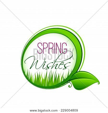 Springtime Wishes Icon Of Green Leaf And Grass For Spring Time Seasonal Greeting Card. Vector Wish T