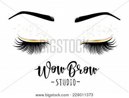 Brow Studio. Vector Illustration Of Lashes And Brows. For Beauty Salon, Lash Extensions Maker, Brows