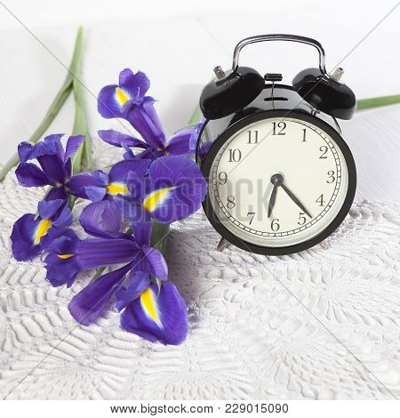 Violet Irises Xiphium -bulbous Iris, Sibirica- With Clock On White Background With Space For Text. T