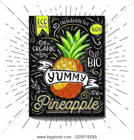 Colorful Label Poster Stickers Food Fruits Vegetable Chalk Sketch Style, Food And Spices. Pineapple.