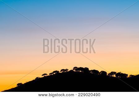 Mountain And Trees Backlit At Sunset, Monfrague, Extremadura