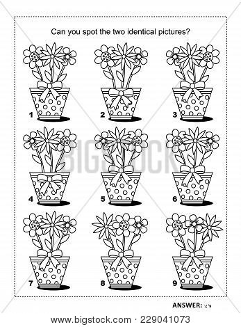 Iq Training Find The Two Identical Pictures With Flowers In Dotted Pots Visual Puzzle And Coloring P