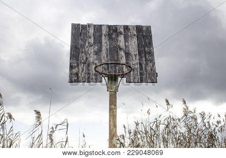 Old Basketball Backboard And Basket. Deserted Basketball Backboard On A Background Of Trees.