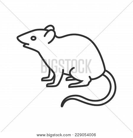 Mouse, Rat Linear Icon. Rodent. Thin Line Illustration. Pest. Contour Symbol. Vector Isolated Outlin