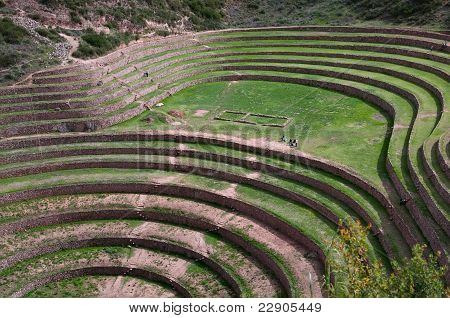Moray - agriculture in Sacred Valley