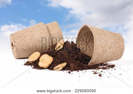 Concept Of Agriculture In Which You Can See Seeds, Heap Of Soil And Peat Pots