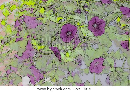 Purple Petunia Vine