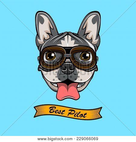 Bulldog. Dog Pilot. Bulldog Wearind In Pilot S Glasses. Vector Illustration Isolated On Blue Backgro
