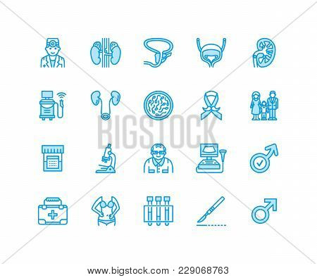 Urology Vector Flat Line Icons. Urologist, Bladder, Kidneys, Adrenal Glands, Prostate. Linear Medica