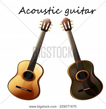 Two Models Of Guitars - A Detailed Layout Of Acoustic Guitars