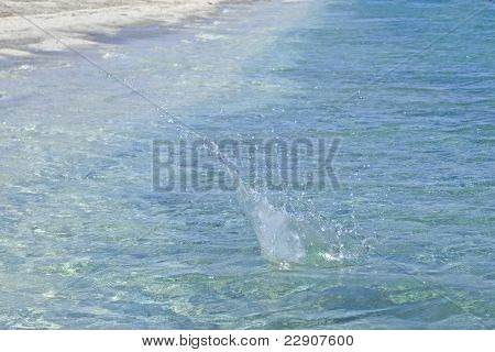 Splash In The Water
