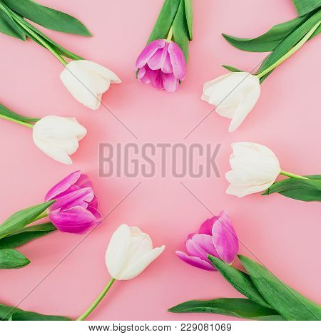 Floral Background With Tulips Flowers On Pink Pastel Background. Flat Lay, Top View. Spring Time Bac