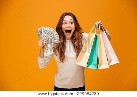 Image of excited screaming young lady standing isolated over yellow background looking camera holding shopping bags and money.