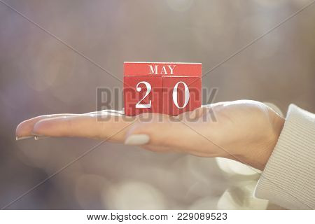 The Woman Is Holding A Red Wooden Calendar. Red Wooden Cube Shape Calendar For May 20 With Hand