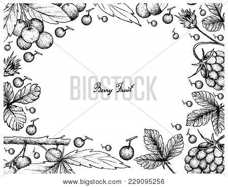 Berry Fruit, Illustration Frame Of Hand Drawn Sketch Of Fresh Arctic Bramble, Arctic Raspberry Or Ru