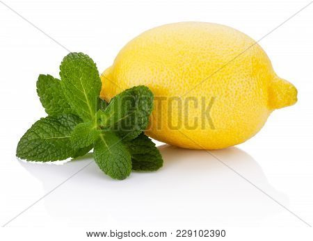 Fresh Fruit Lemon With Leaf Green Mint Isolated On White Background