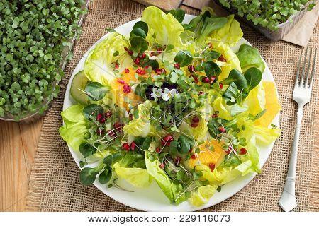 Vegetable Salad With Fresh Kale And Broccoli Microgreens, Lettuce, Corn Salad, Pomegranate, Orange,