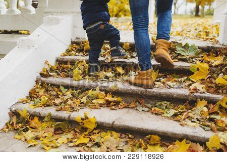 Close Up Legs Of Woman Walk In Fall Park With Little Child Boy, Climb Up Stairs With Dry Yellow Autu