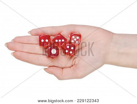 Dice In Hands On White Background Isolation, Top View