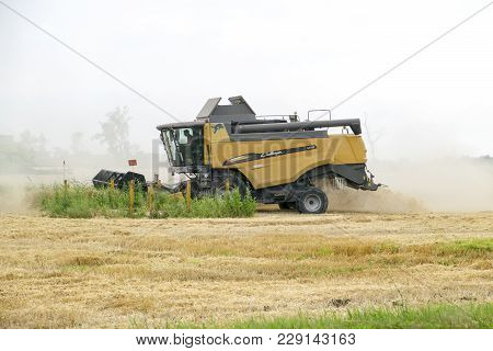 Russia, Temryuk - 01 July 2016: Combain Collects On The Wheat Crop. Agricultural Machinery In The Fi