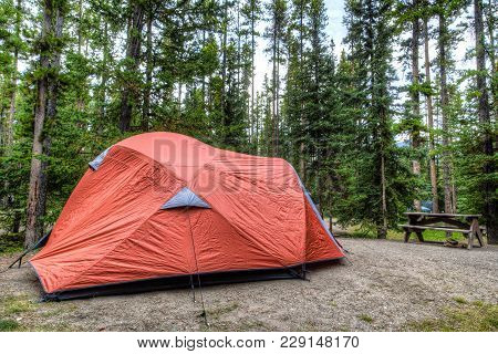 Camping Tent In The Summer Wilderness Of Banff National Park In Canada With Surrounding Pine Trees.