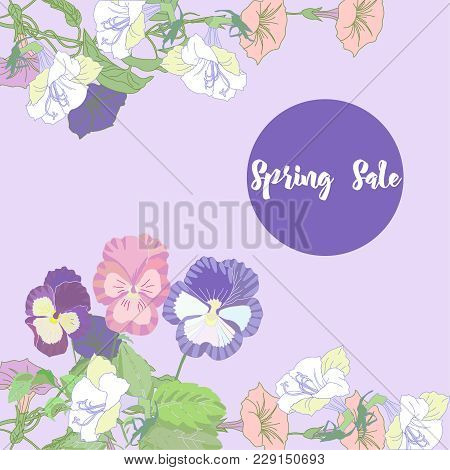 Spring Sale Background With  Bindweed.  Vector Illustration