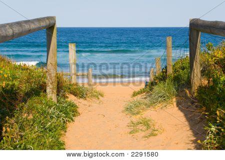 Path To Ocean Beach
