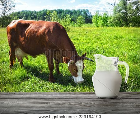 Jug Of Milk On Wooden Table With Cow Tweaking The Grass In The Background