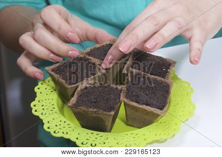 Growing Seedlings At Home. A Woman Puts Peat Pots Filled With Earth On A Tray.