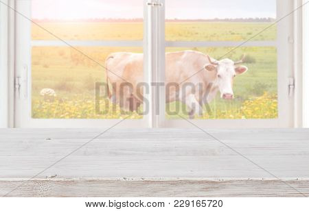 Wooden Table In Front Of Window With Meadow And Cow
