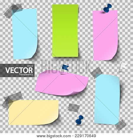 Empty Colored Papers With Accessories With Vector Transparency