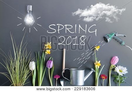 Spring 2018 Flower Bed Garden With Clouds, Light Bulb As The Sun, And Hose Pipe With A Sketch Of Wat