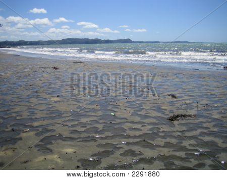 Beach 065