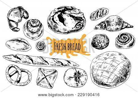 Bread Vector Hand Drawn Set Illustration. Different Of Wheat, Flour Fresh Bread. Gluten Food Bakery