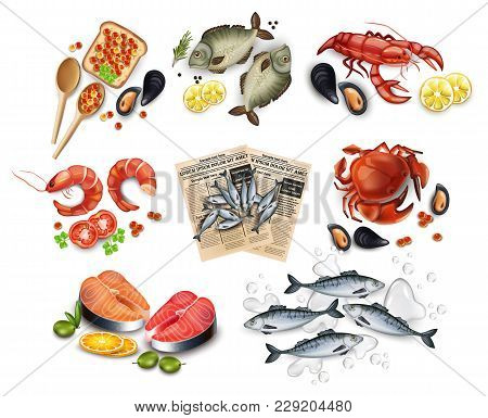 Sea Food Set Collection Vector Realistic. Salmon Steak, Crabs, Fish, Shrimps And Caviar