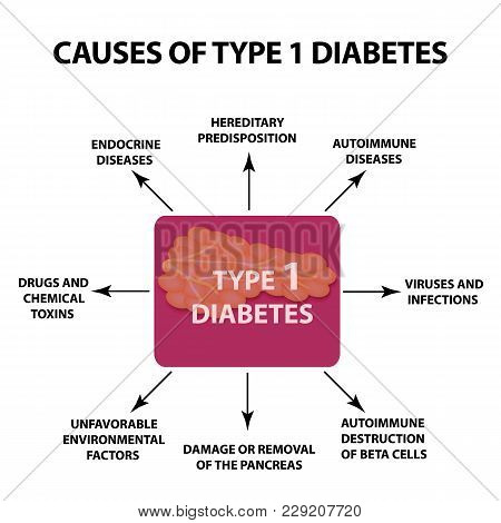 The Causes Of Diabetes Type 1. Infographics. Vector Illustration On Isolated Background