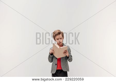 Concentrated Little Schoolboy Reading Book Isolated On Grey