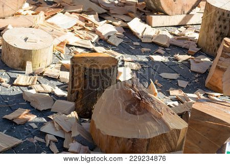 Cut Beech Trunk After St. Thomas Wood Chopping Competition In Bilbao
