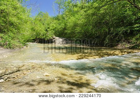 Sunny Spring Day In The Valley Of The River Jean In The Thickets Of Hornbeam. Russia, Gelendzhik, Vi