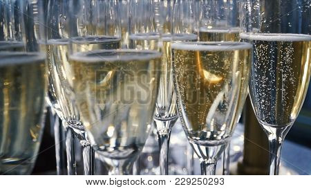 Glasses Of Champagne With A Large Depth Of Field. Clip. Many Glass Of Champagne. A Lot Of Wine Glass