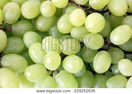 Texture Grape, Bunch Of Fresh Grapes, Fresh Green Grapes. Healthy Fruits Wine Grapes Background, Gre