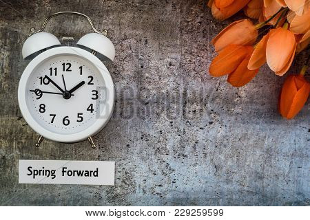 Spring Daylight Saving Time Concept, Spring Forward, With White Clock And Orange Tulips On Gray, Fla