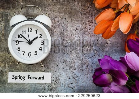 Spring Daylight Saving Time Concept With White Clock And Orange And Purple Tulip Flowers On Gray Boa